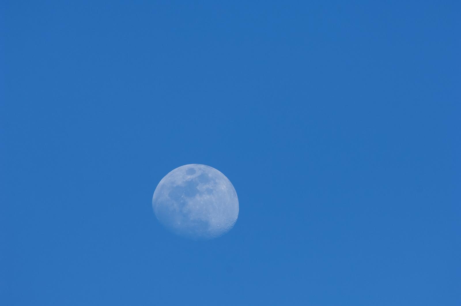 「青空の中の白い月」の写真