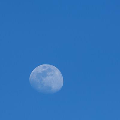 「青空の中の白い月」の写真素材