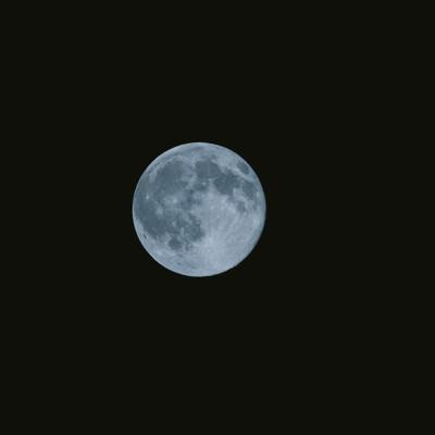 「満月の夜」の写真素材