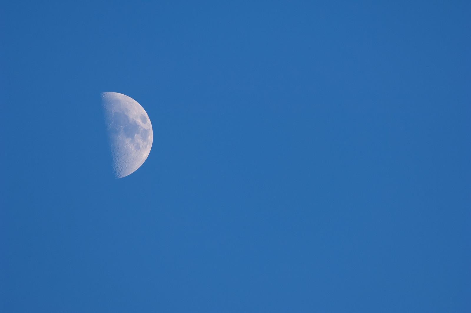 「上弦の月上弦の月」のフリー写真素材を拡大