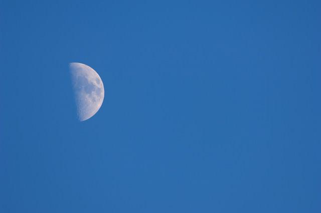 上弦の月の写真