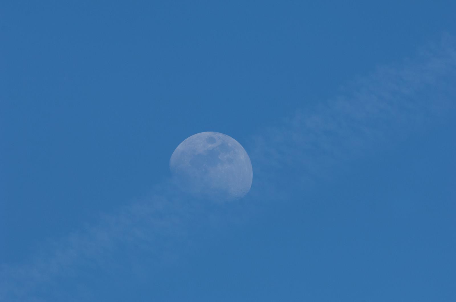 「うっすらと見える月」の写真