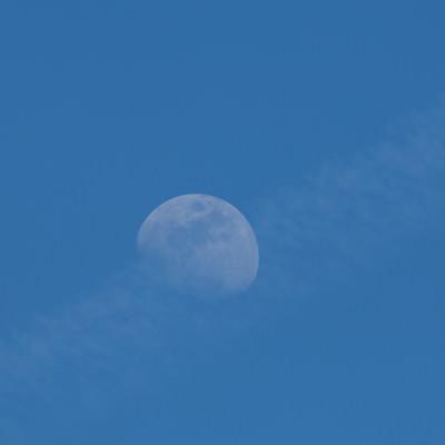 うっすらと見える月の写真