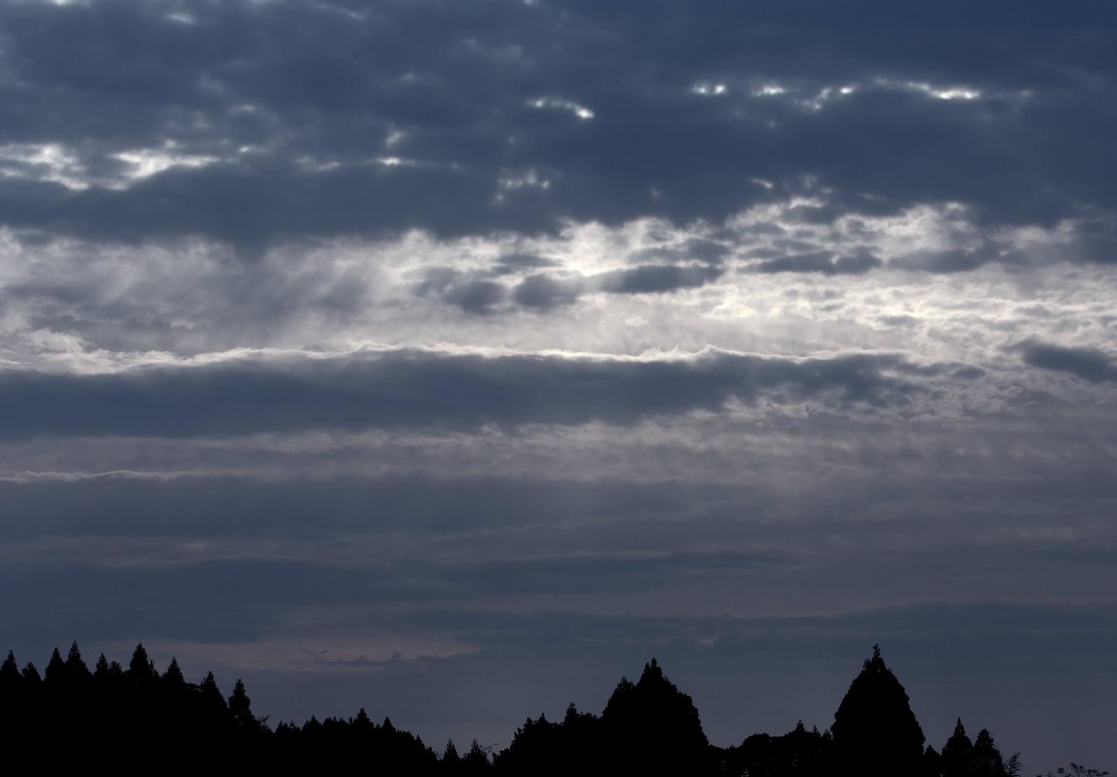 「暗い森と空の間に」の写真