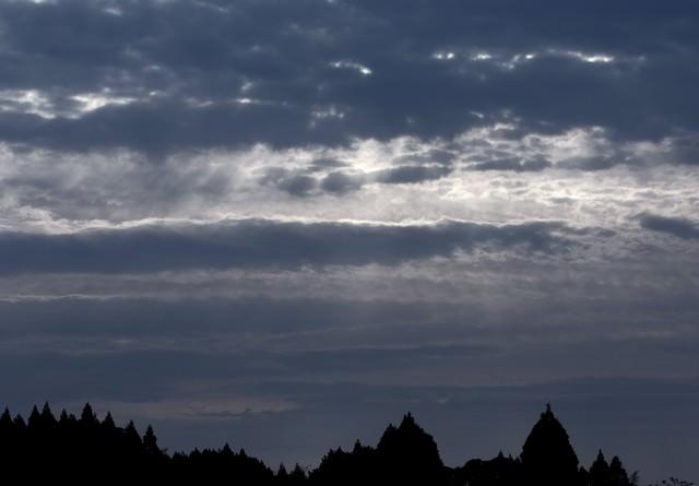 暗い森と空の間にの写真