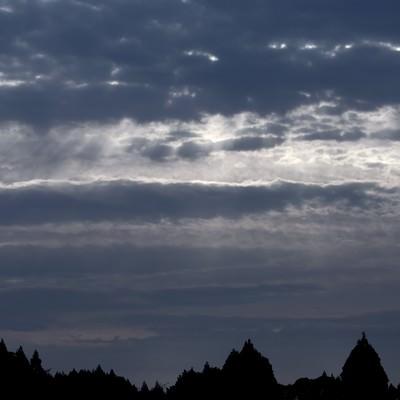 「暗い森と空の間に」の写真素材
