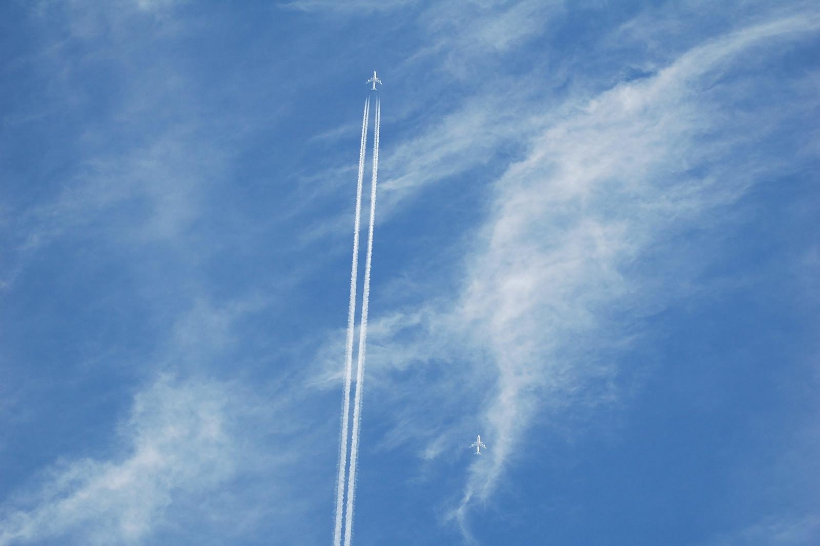 「空に真っすぐ描かれた飛行機雲」の写真
