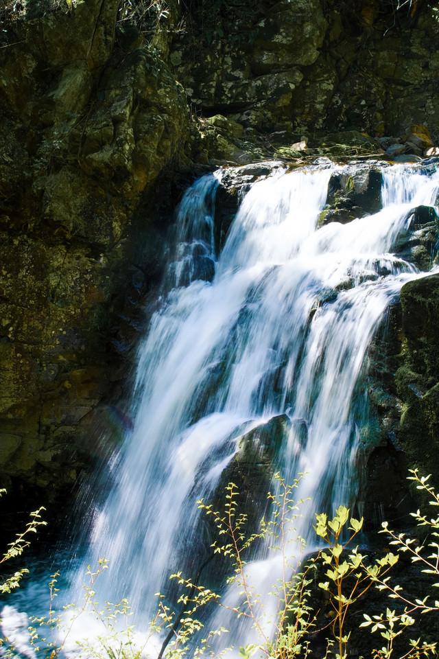 つたの滝(長野県根羽村)の写真