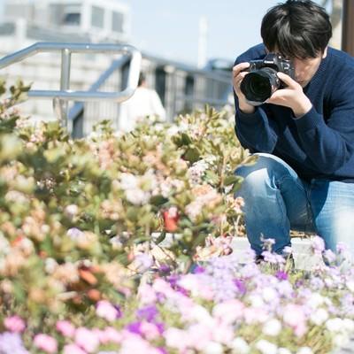 「花を無視して虫を撮影する芋虫フェチ」の写真素材