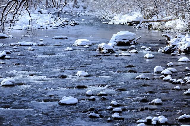 冬の奥入瀬渓流の写真