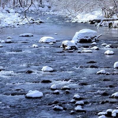 「冬の奥入瀬渓流」の写真素材