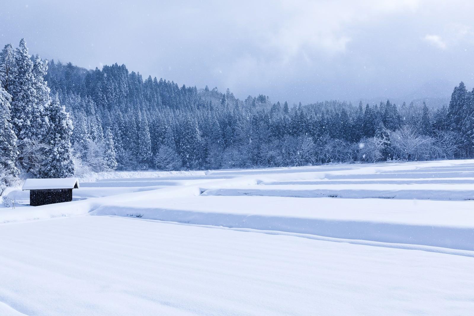 「雪が降り積もる山里」の写真