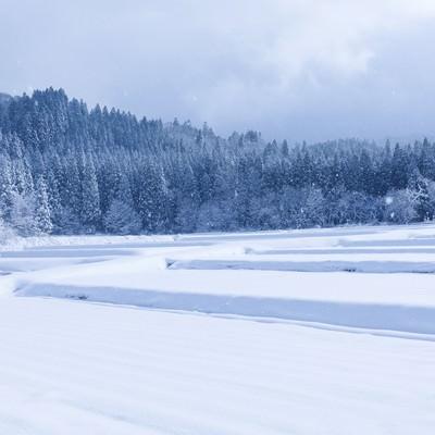 「雪が降り積もる山里」の写真素材