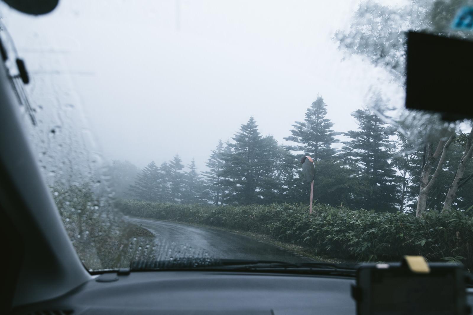 「雨天時に走行する車の中雨天時に走行する車の中」のフリー写真素材を拡大