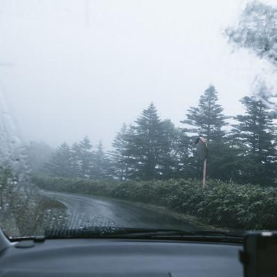 雨天時に走行する車の中の写真