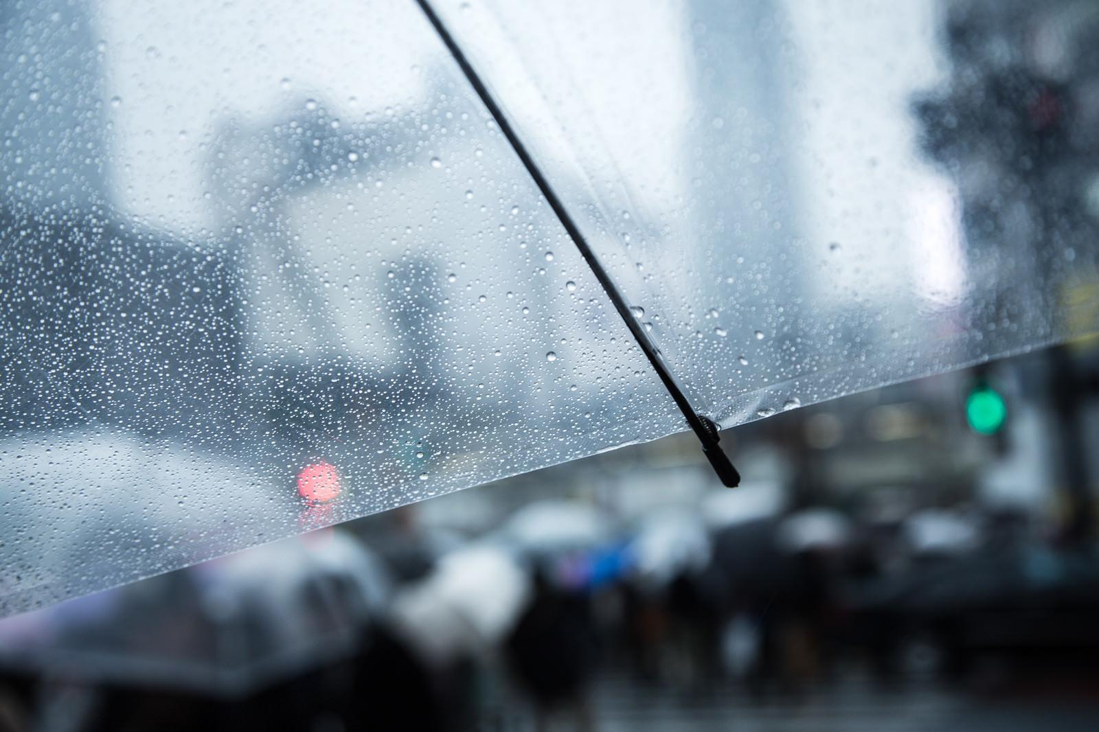 「無料素材 写真 雨」の画像検索結果