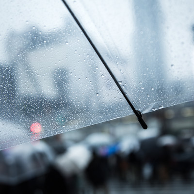 傘についた水滴の写真