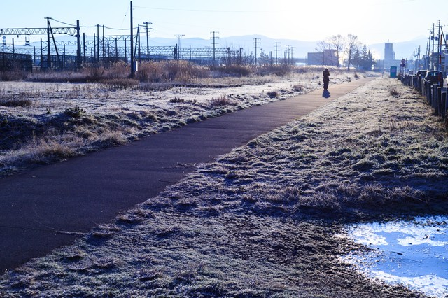 冬の朝の写真