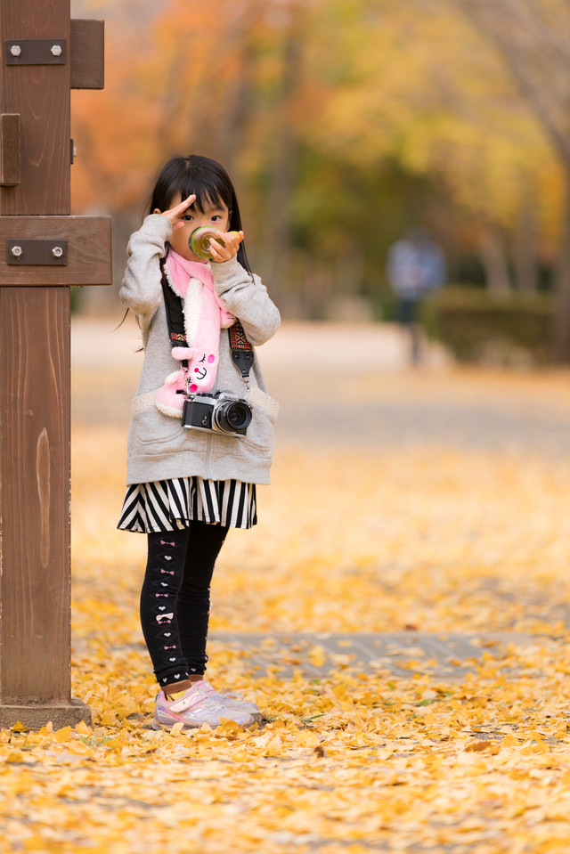 落ち葉の公園に遊びに来た女の子の写真