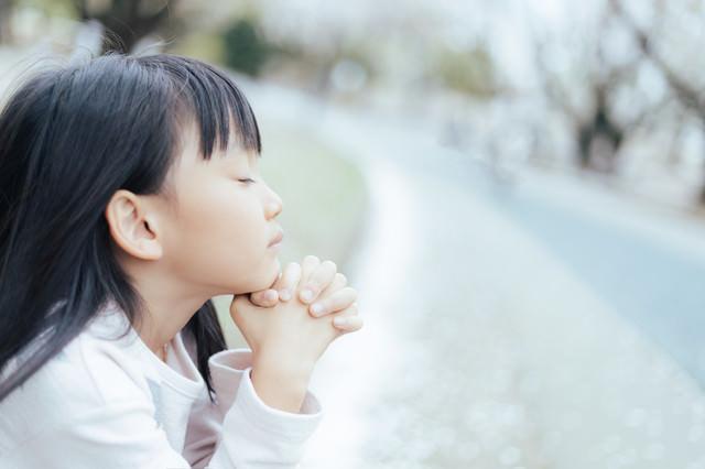 神様一生のお願いですの写真