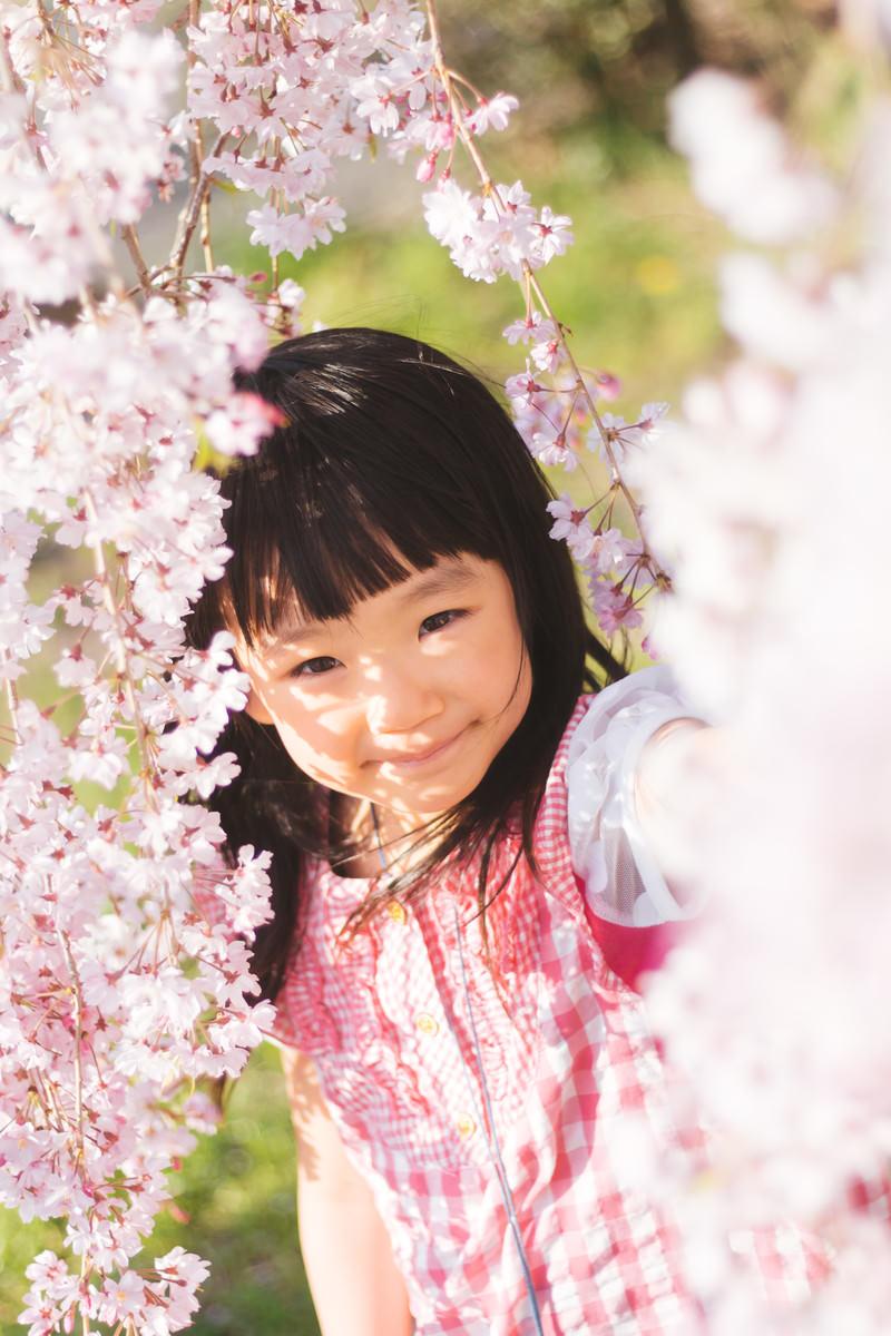 「桜色の女の子」の写真[モデル:あんじゅ]