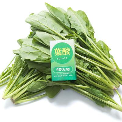 「ほうれん草と葉酸」の写真素材