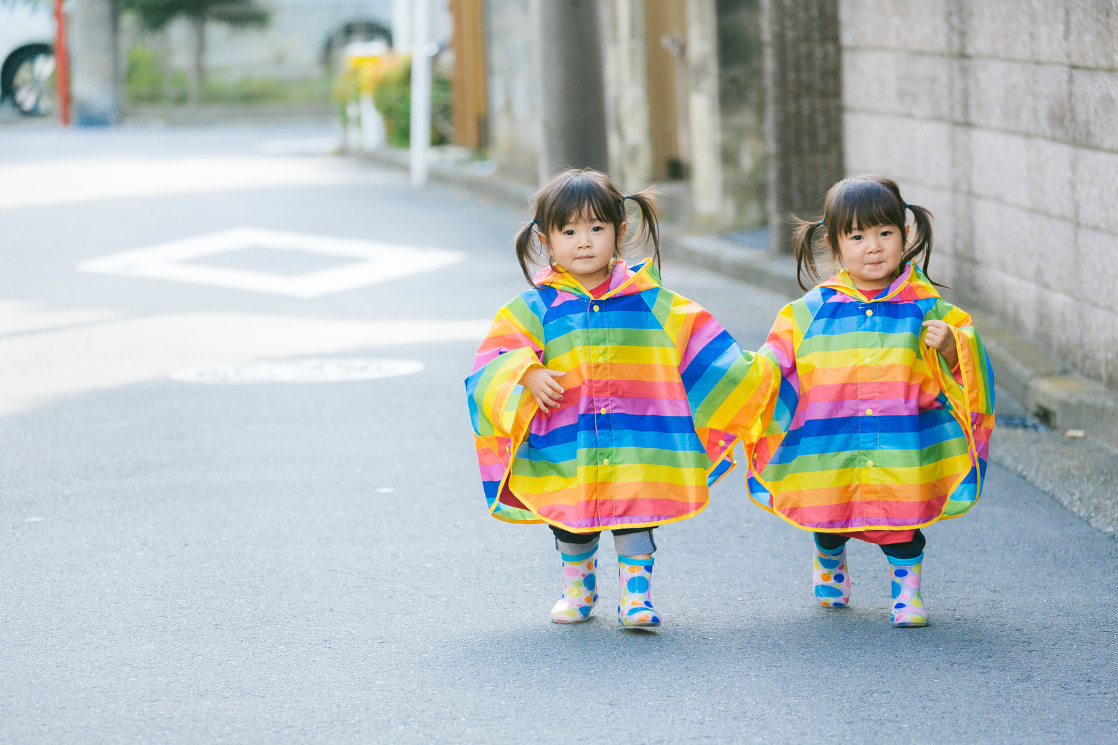 「仲良く手をつないで散歩する双子の姉妹(2歳)」の写真[モデル:あおみどり]