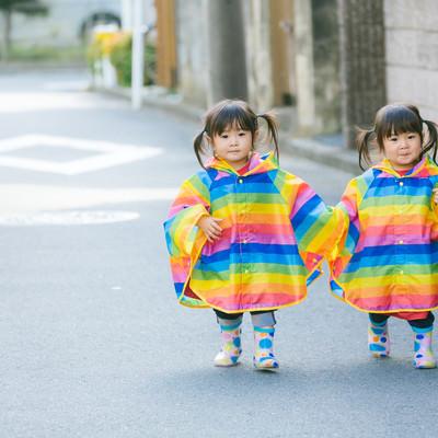 「仲良く手をつないで散歩する双子の姉妹(2歳)」の写真素材