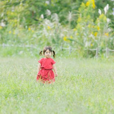 「広い空き地と双子の女の子」の写真素材