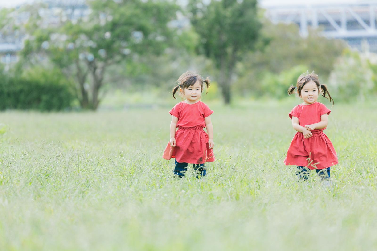 「ツインテールの仲良し双子女児」の写真[モデル:あおみどり]