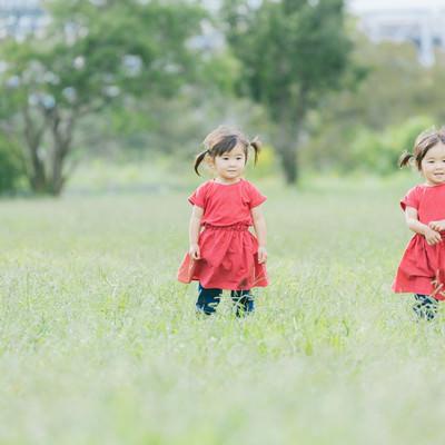 「ツインテールの仲良し双子女児」の写真素材