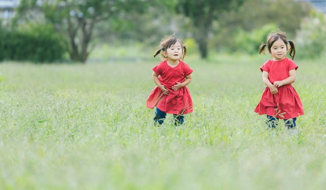 原っぱと双子の女児の写真
