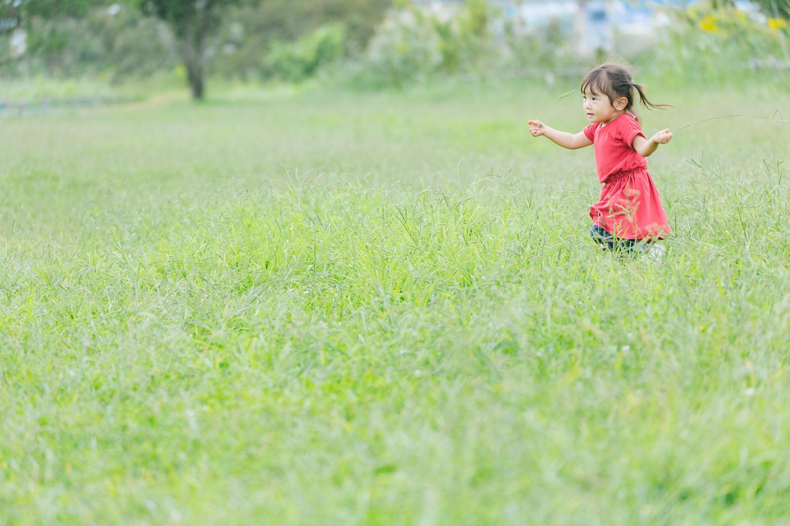 「原っぱを無邪気に走り回る小さい女の子」の写真