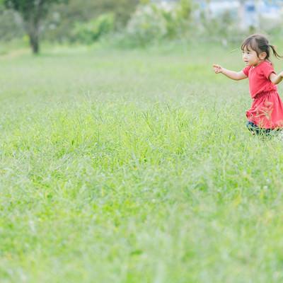 原っぱを無邪気に走り回る小さい女の子の写真