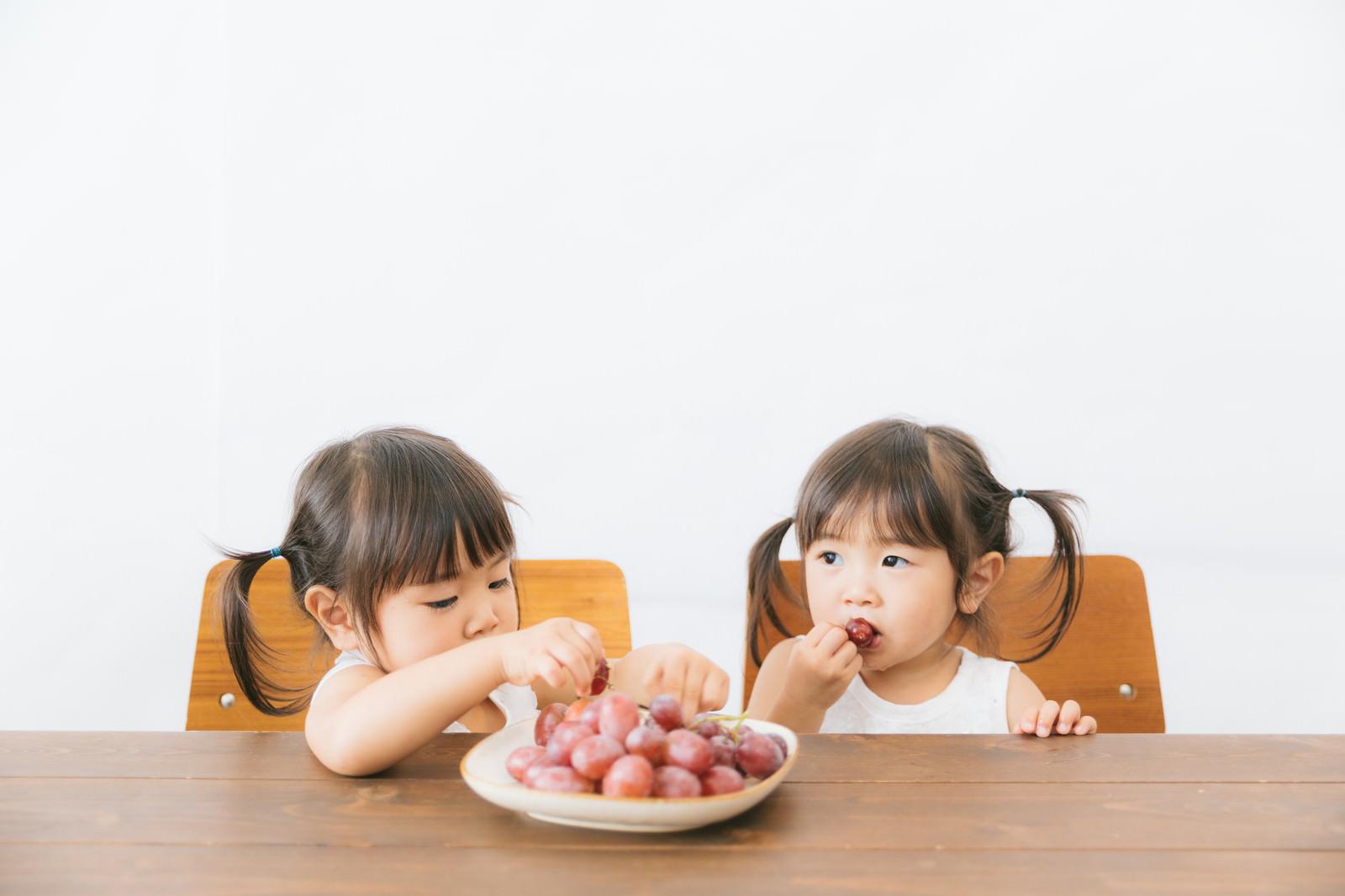 「子供たちのおやつに葡萄を与えてみた子供たちのおやつに葡萄を与えてみた」[モデル:あおみどり]のフリー写真素材を拡大