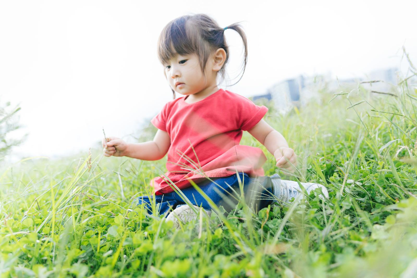 「草むらで遊ぶ小さい女の子草むらで遊ぶ小さい女の子」[モデル:あおみどり]のフリー写真素材を拡大