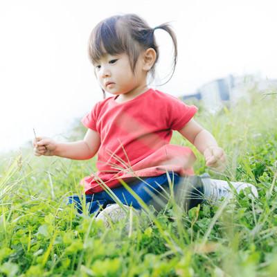 「草むらで遊ぶ小さい女の子」の写真素材