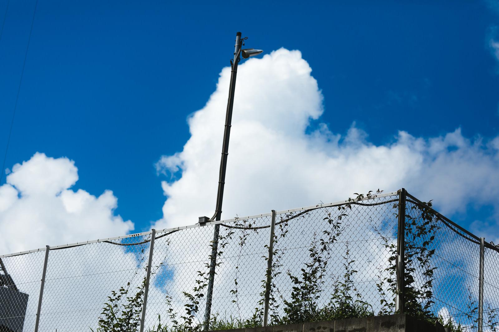「公園の柵と真夏空公園の柵と真夏空」のフリー写真素材を拡大