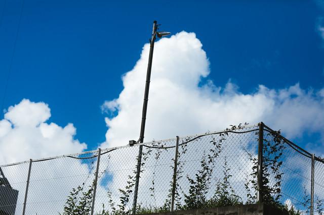 公園の柵と真夏空の写真