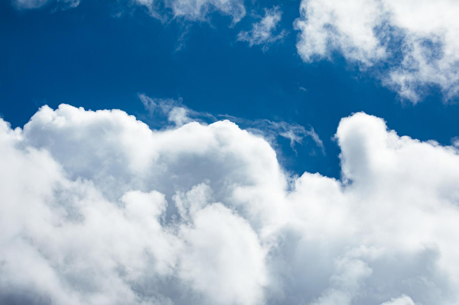 「夏空と積乱雲」の写真