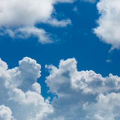 青空とむくむく雲の写真