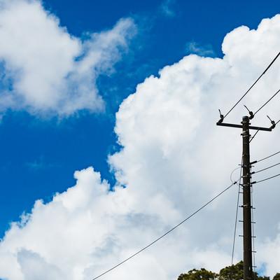 晴天と積乱雲と電柱の写真
