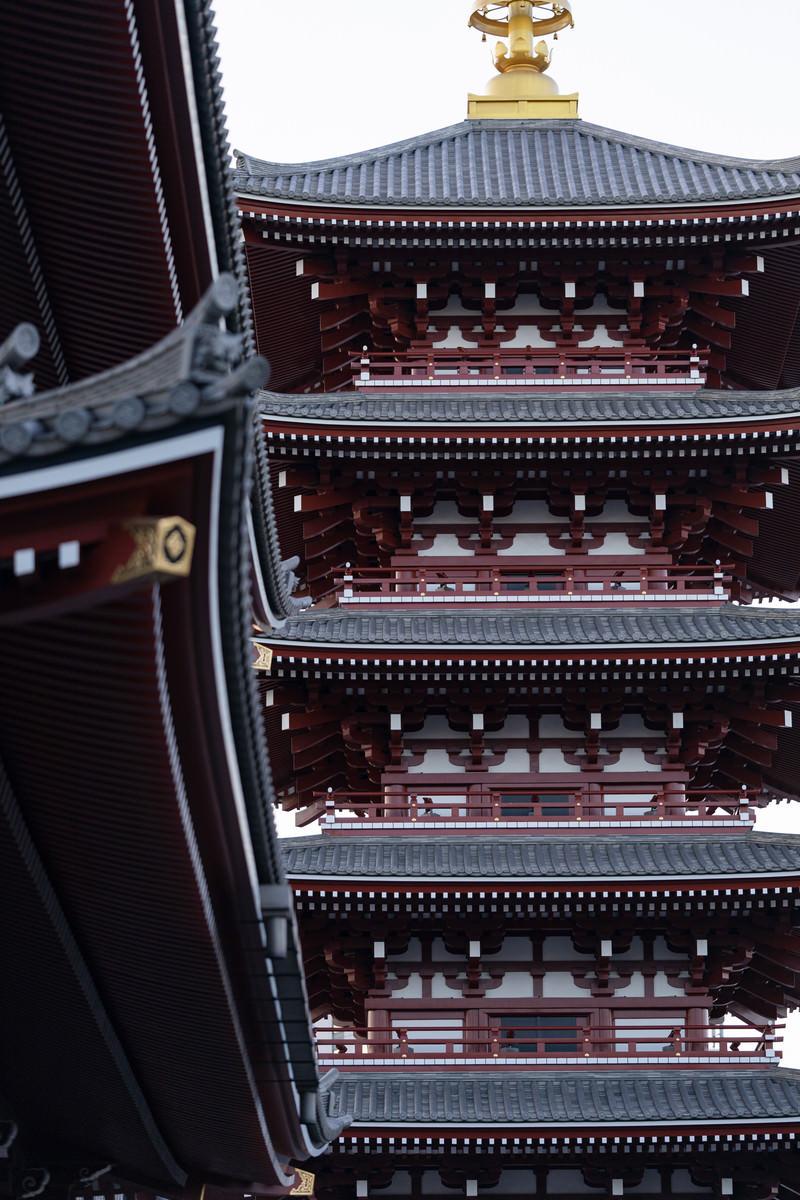 「軒から見上げる五重塔」の写真