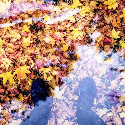 「落ち葉と足元」の写真素材