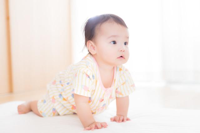 ハイハイをはじめた赤ちゃんの写真