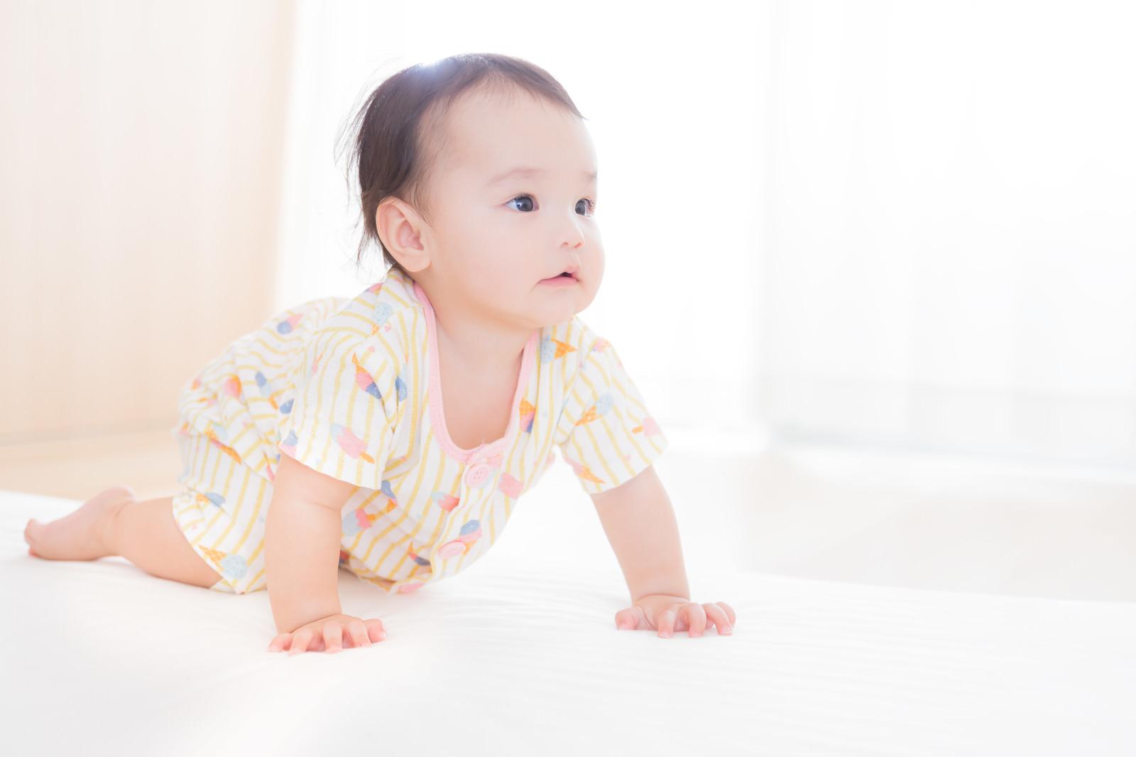 「すくすく成長する赤ちゃん(ハイハイの様子)」の写真[モデル:めぐな]