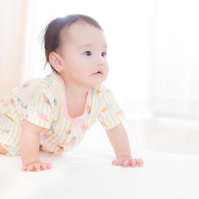 すくすく成長する赤ちゃん(ハイハイの様子)の写真