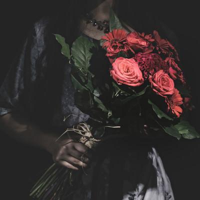 「真紅の薔薇をお持ちしました」の写真素材