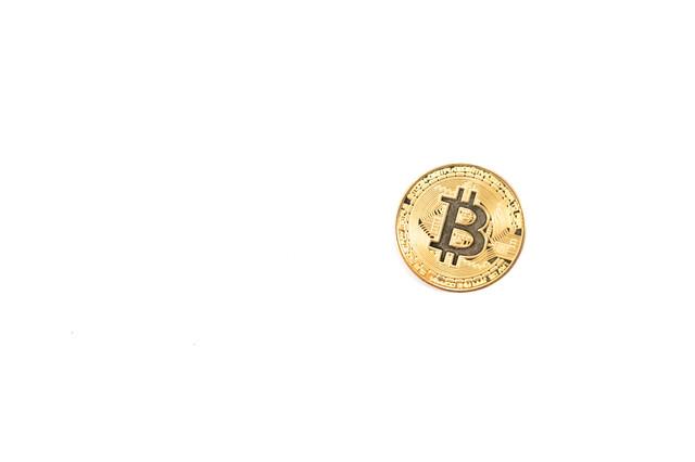 ビットコイン1枚の写真