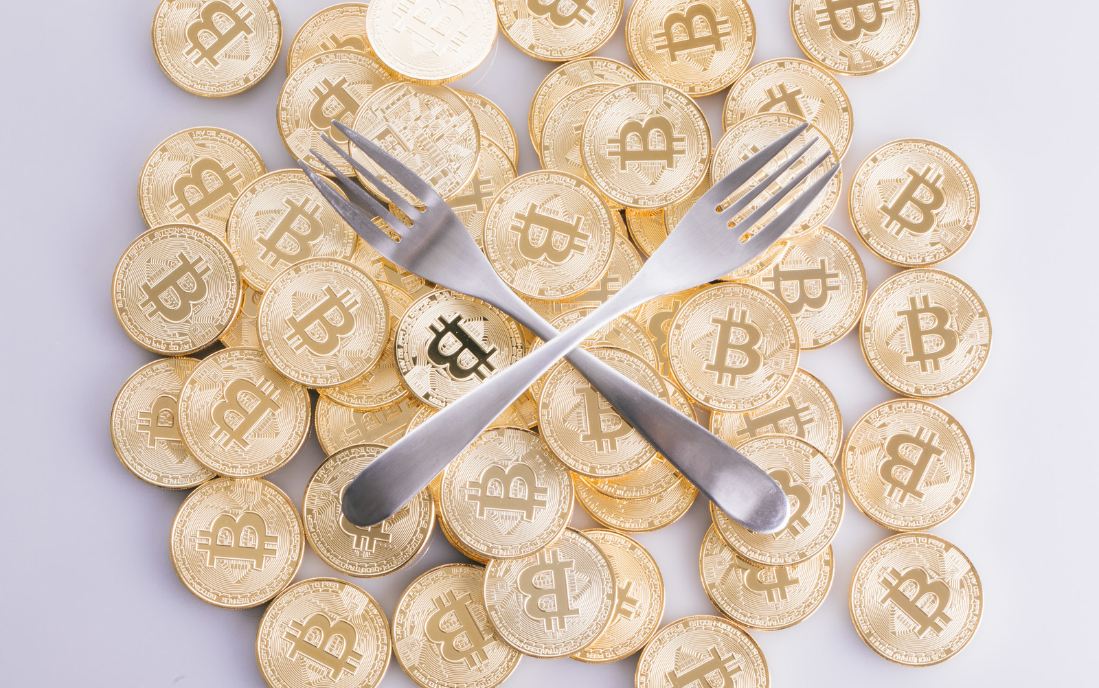 「フォークコイン(仮想通貨)」の写真